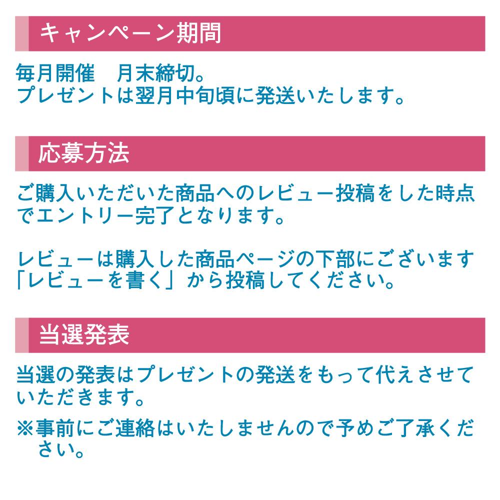 レビュー投稿キャンペーン4
